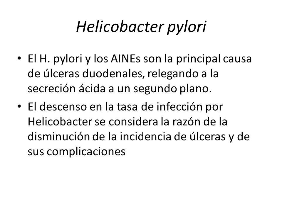 Helicobacter pylori El H. pylori y los AINEs son la principal causa de úlceras duodenales, relegando a la secreción ácida a un segundo plano.