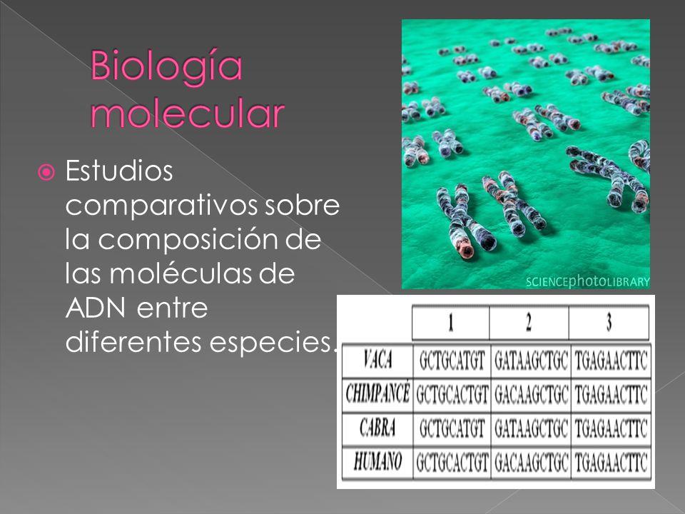 Biología molecular Estudios comparativos sobre la composición de las moléculas de ADN entre diferentes especies.