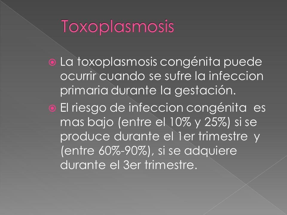 Toxoplasmosis La toxoplasmosis congénita puede ocurrir cuando se sufre la infeccion primaria durante la gestación.