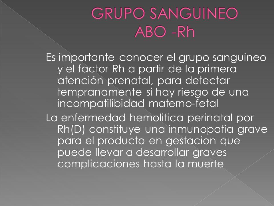 GRUPO SANGUINEO ABO -Rh