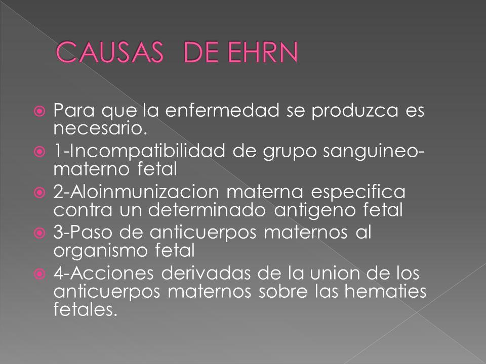 CAUSAS DE EHRN Para que la enfermedad se produzca es necesario.