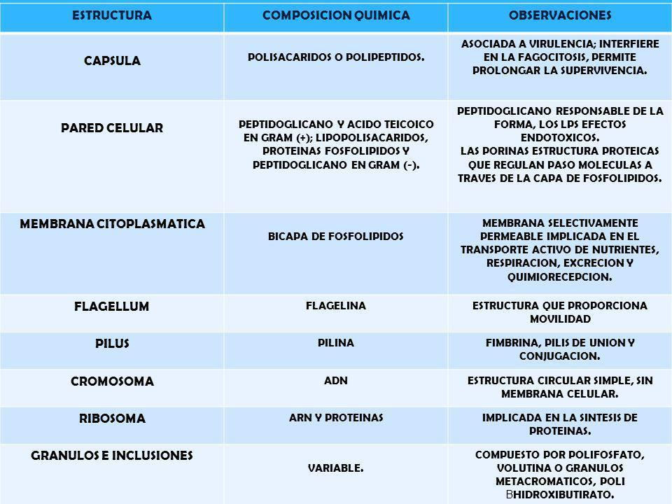 ESTRUCTURA COMPOSICION QUIMICA OBSERVACIONES