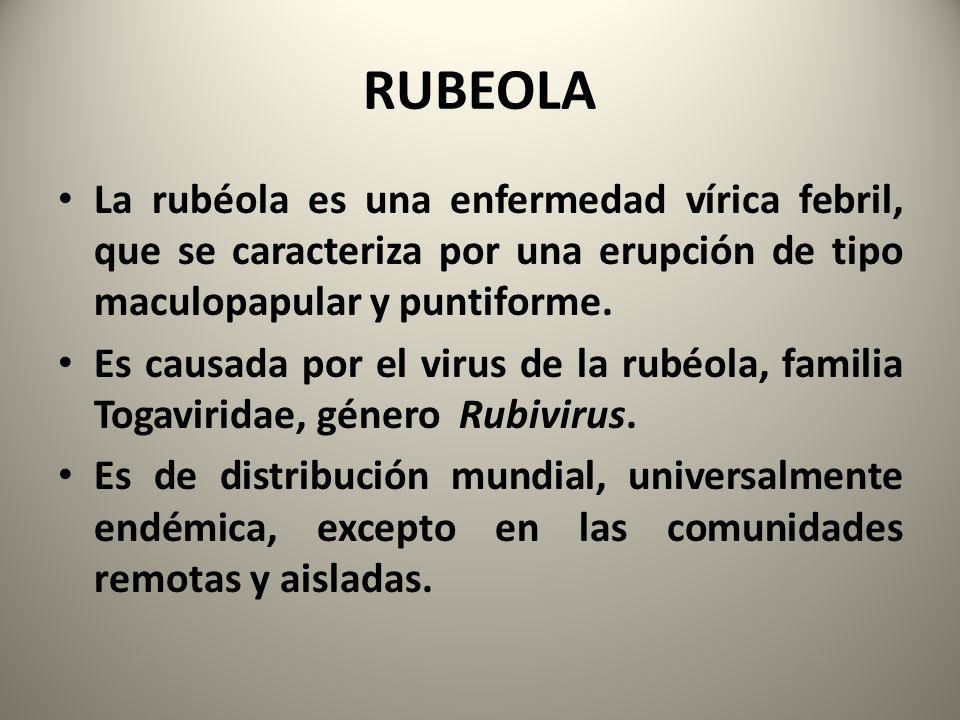 RUBEOLA La rubéola es una enfermedad vírica febril, que se caracteriza por una erupción de tipo maculopapular y puntiforme.