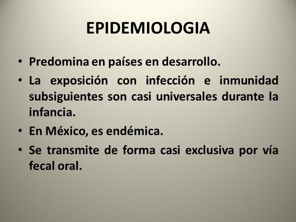 EPIDEMIOLOGIA Predomina en países en desarrollo.