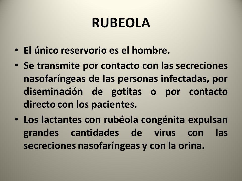 RUBEOLA El único reservorio es el hombre.