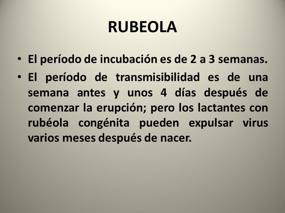 RUBEOLA El período de incubación es de 2 a 3 semanas.