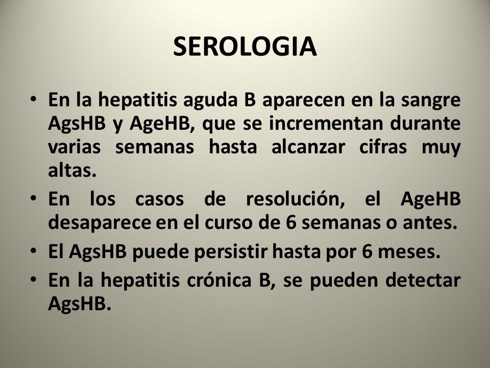 SEROLOGIA En la hepatitis aguda B aparecen en la sangre AgsHB y AgeHB, que se incrementan durante varias semanas hasta alcanzar cifras muy altas.