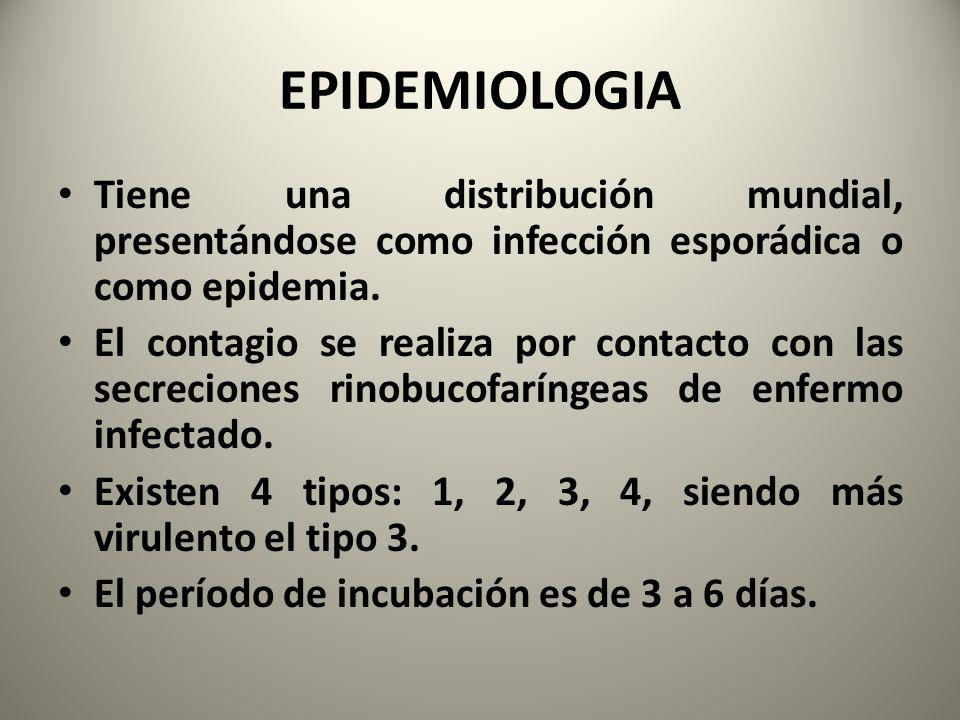 EPIDEMIOLOGIA Tiene una distribución mundial, presentándose como infección esporádica o como epidemia.