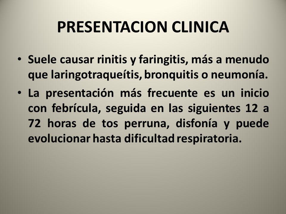 PRESENTACION CLINICA Suele causar rinitis y faringitis, más a menudo que laringotraqueítis, bronquitis o neumonía.