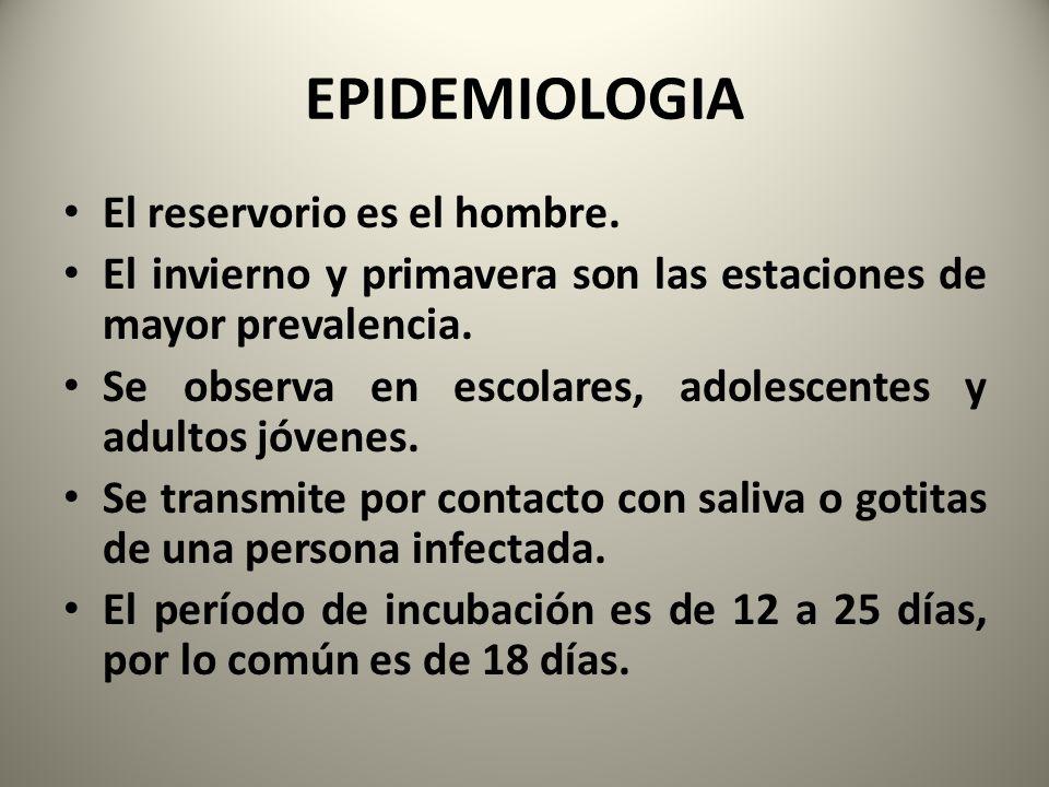 EPIDEMIOLOGIA El reservorio es el hombre.