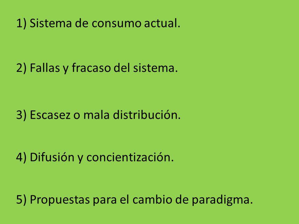1) Sistema de consumo actual.