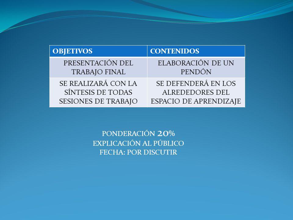 PRESENTACIÓN DEL TRABAJO FINAL ELABORACIÓN DE UN PENDÓN
