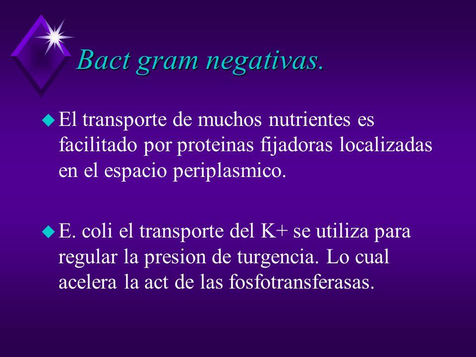 Bact gram negativas. El transporte de muchos nutrientes es facilitado por proteinas fijadoras localizadas en el espacio periplasmico.