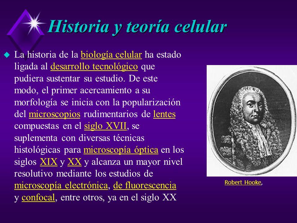 Historia y teoría celular