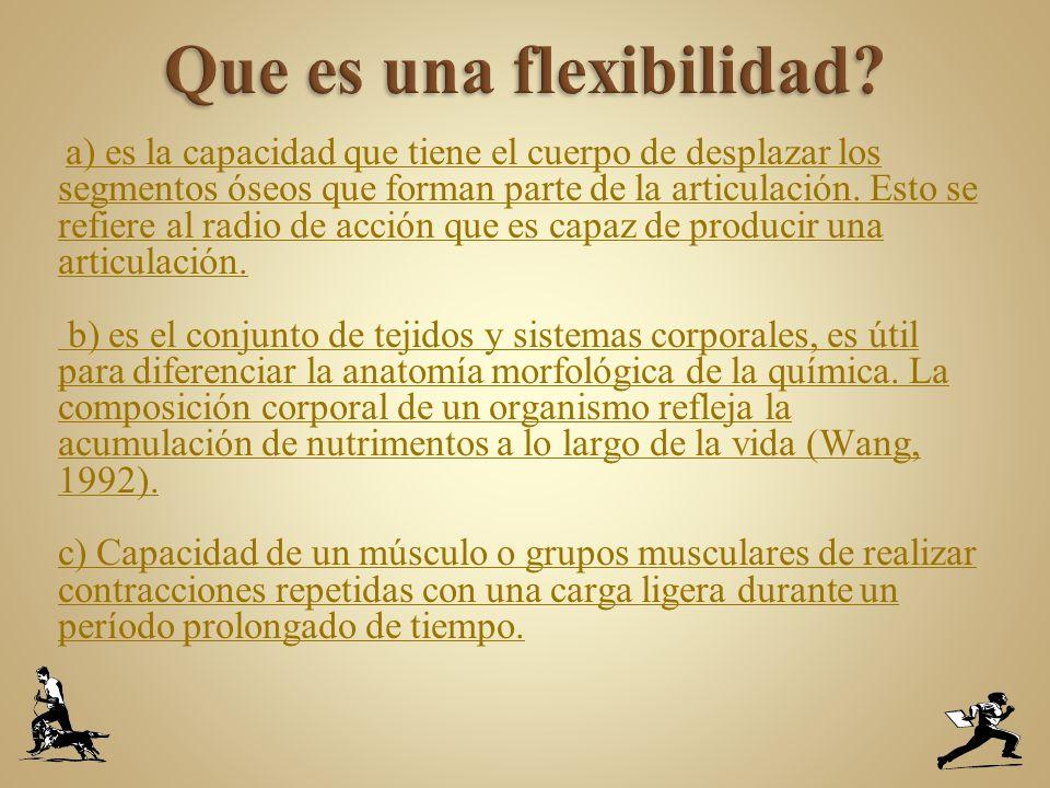 Que es una flexibilidad