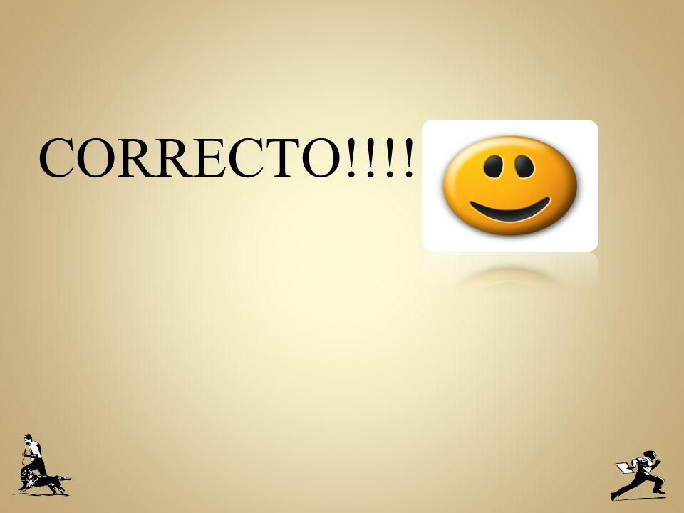 CORRECTO!!!!