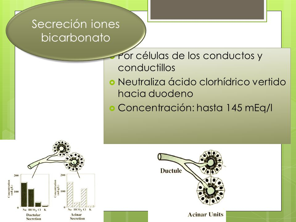 Secreción iones bicarbonato
