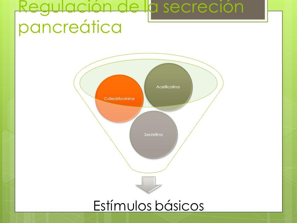Regulación de la secreción pancreática