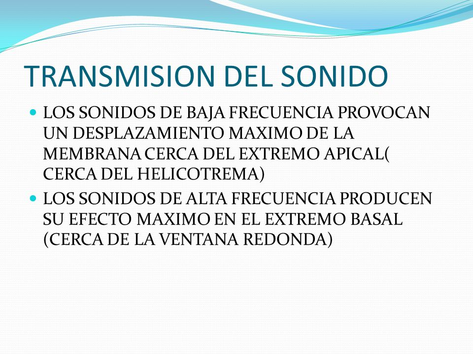 TRANSMISION DEL SONIDO