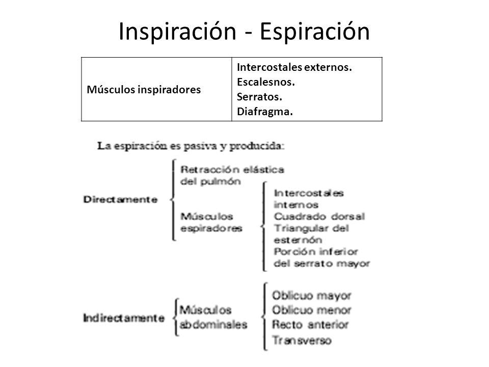 Inspiración - Espiración