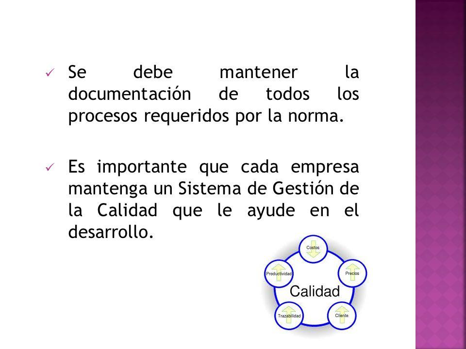 Se debe mantener la documentación de todos los procesos requeridos por la norma.