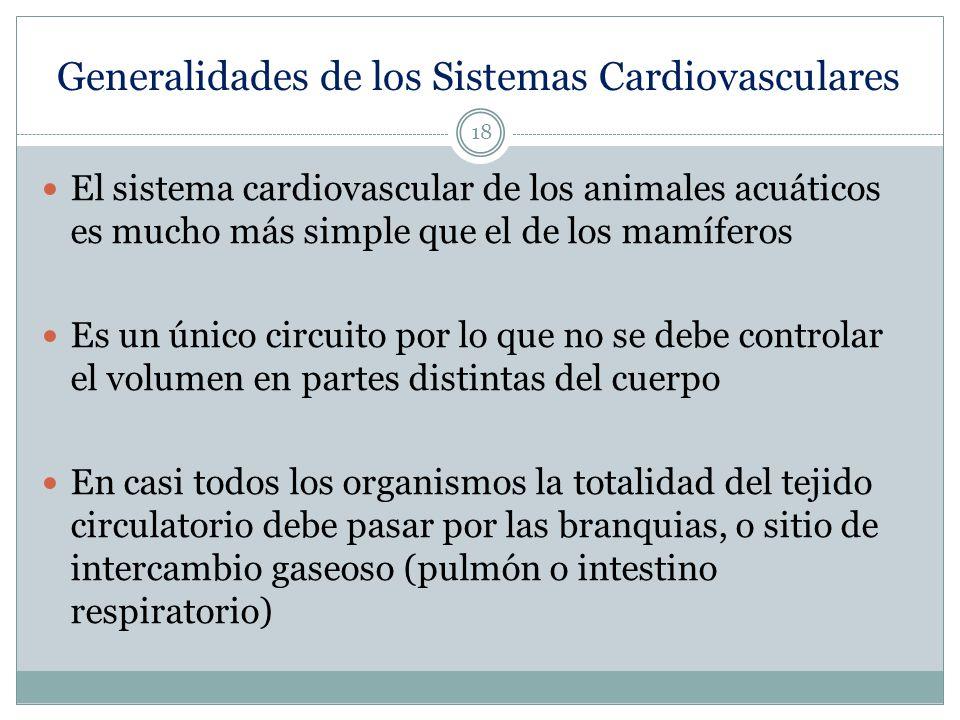 Generalidades de los Sistemas Cardiovasculares
