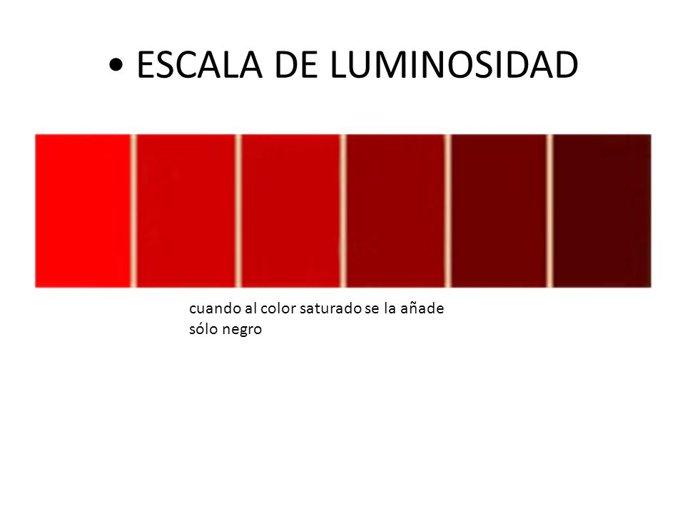 • ESCALA DE LUMINOSIDAD