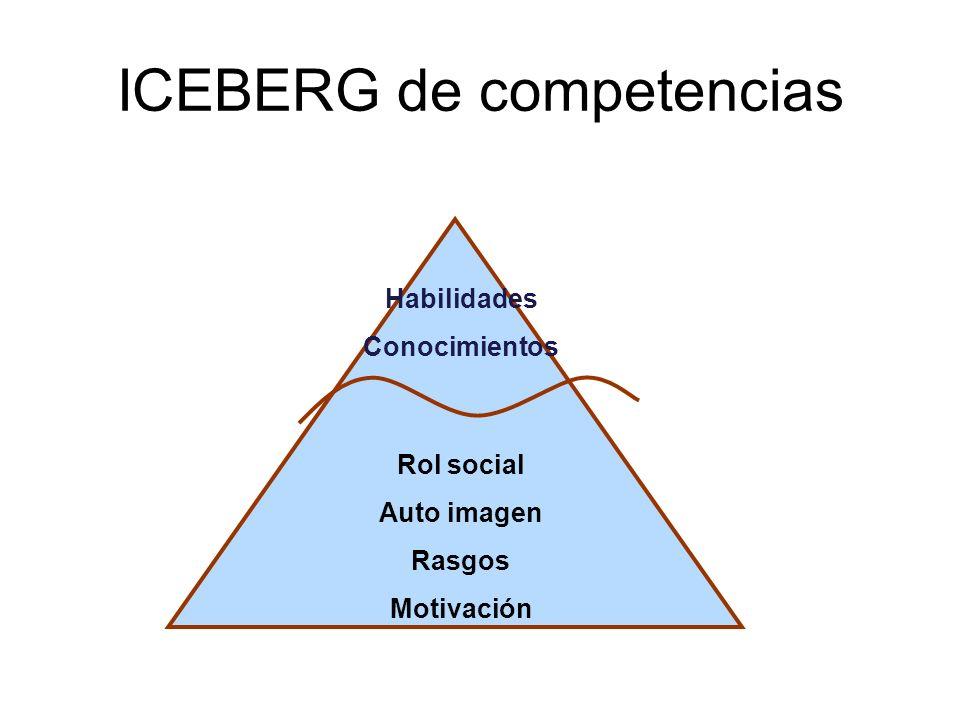 ICEBERG de competencias