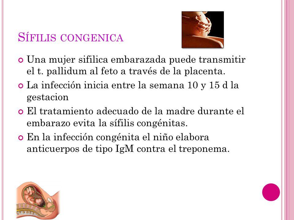 Sífilis congenica Una mujer sifilica embarazada puede transmitir el t. pallidum al feto a través de la placenta.