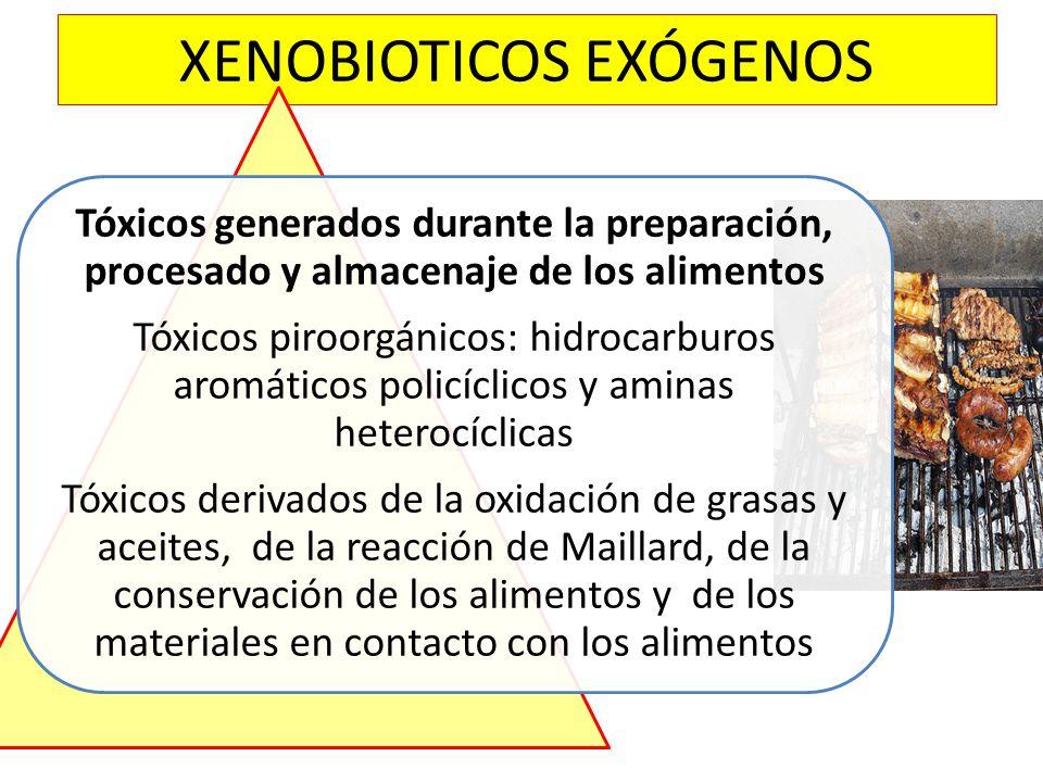 XENOBIOTICOS EXÓGENOS