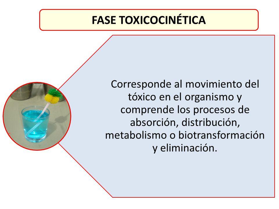 FASE TOXICOCINÉTICA