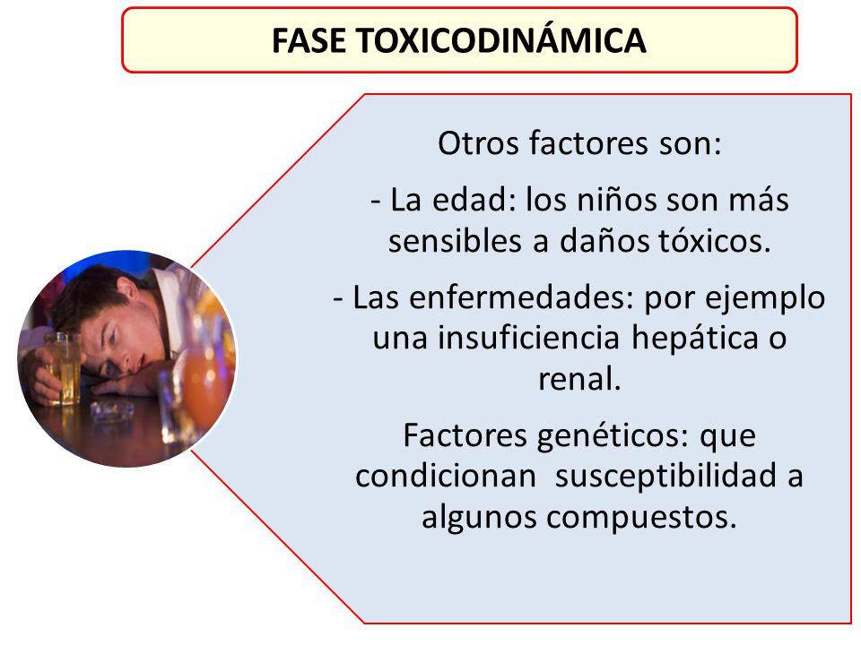 FASE TOXICODINÁMICA Otros factores son: