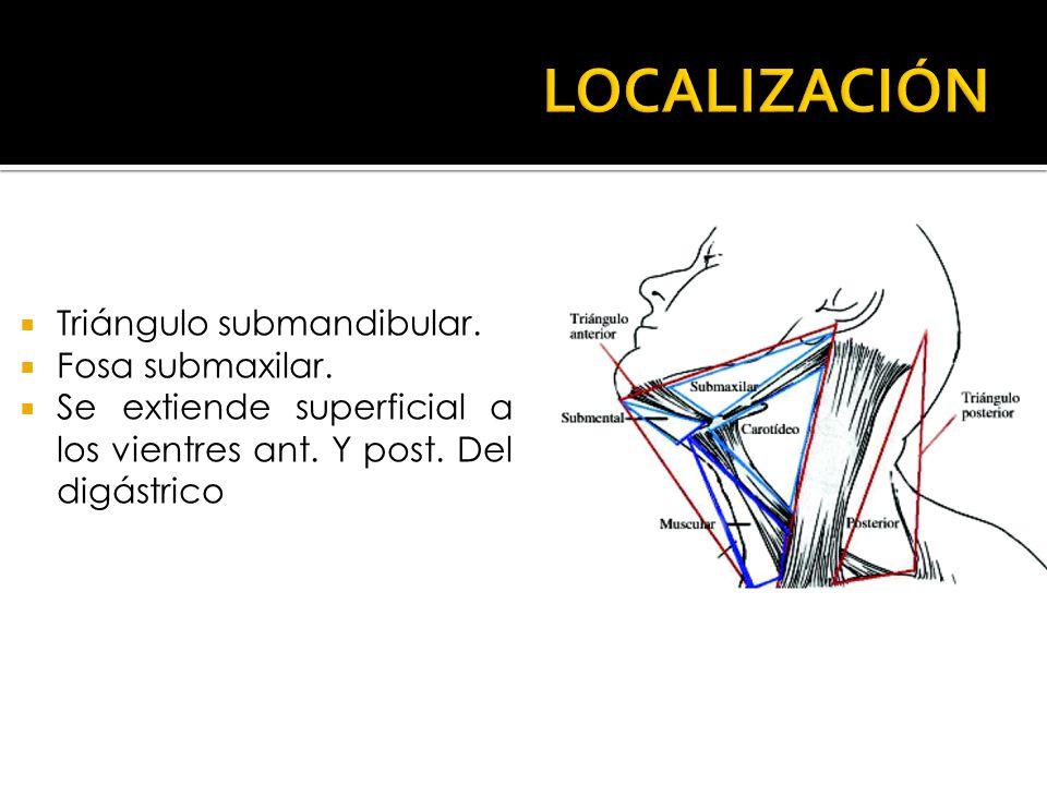 LOCALIZACIÓN Triángulo submandibular. Fosa submaxilar.