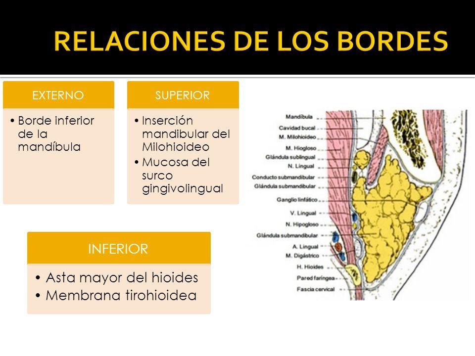 RELACIONES DE LOS BORDES