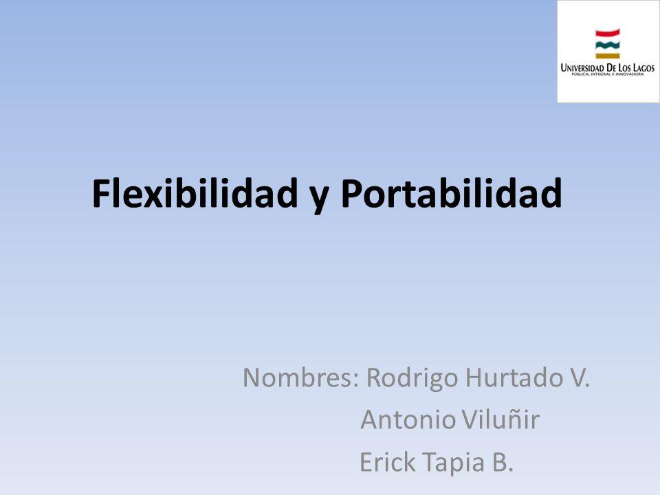 Flexibilidad y Portabilidad