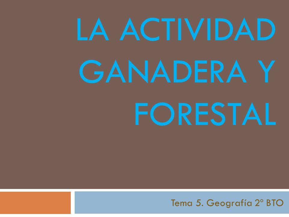 LA ACTIVIDAD GANADERA Y FORESTAL