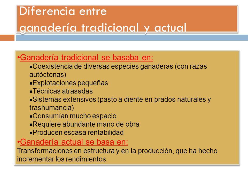 Diferencia entre ganadería tradicional y actual