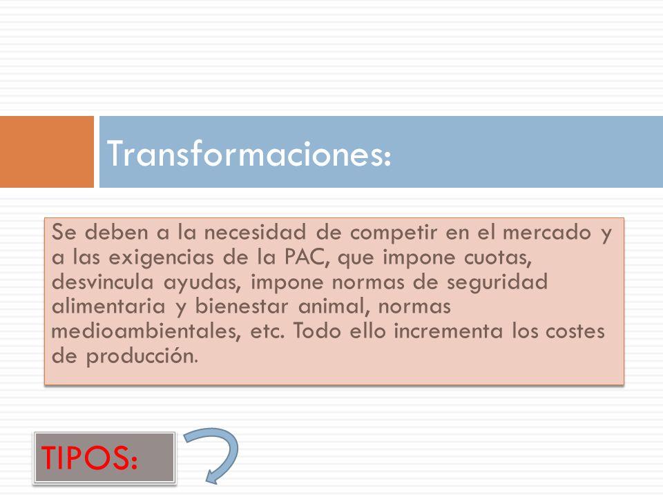 Transformaciones: TIPOS:
