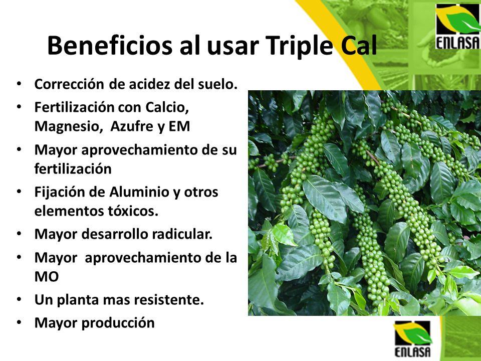 Beneficios al usar Triple Cal