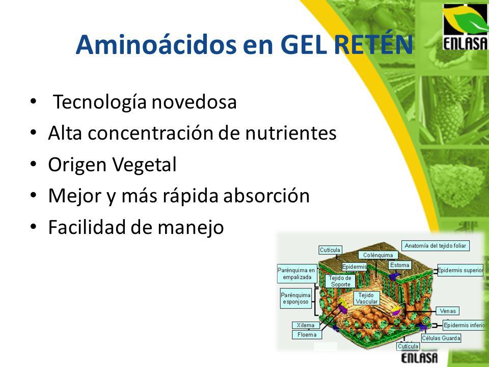Aminoácidos en GEL RETÉN