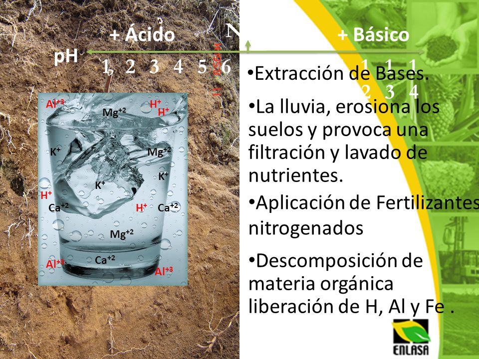 Aplicación de Fertilizantes nitrogenados