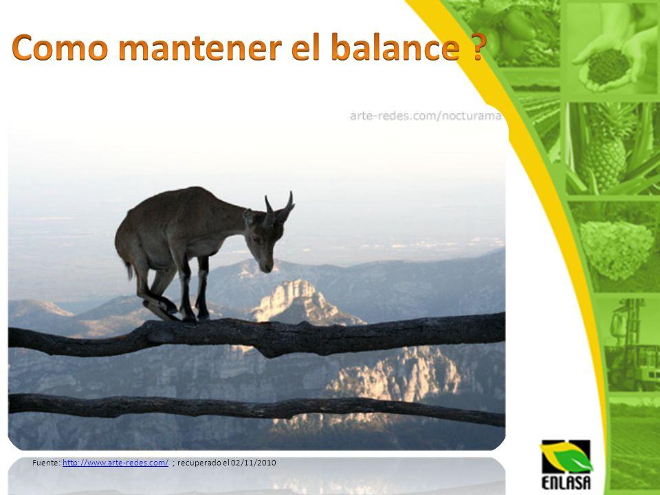 Como mantener el balance