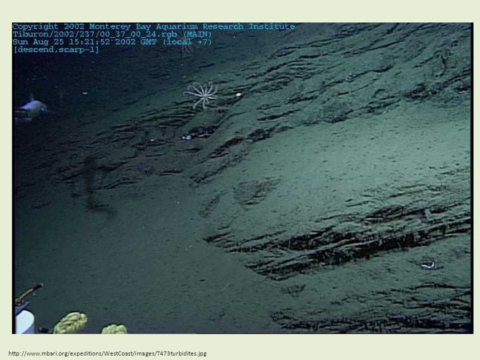 http://www.mbari.org/expeditions/WestCoast/images/T473turbidites.jpg