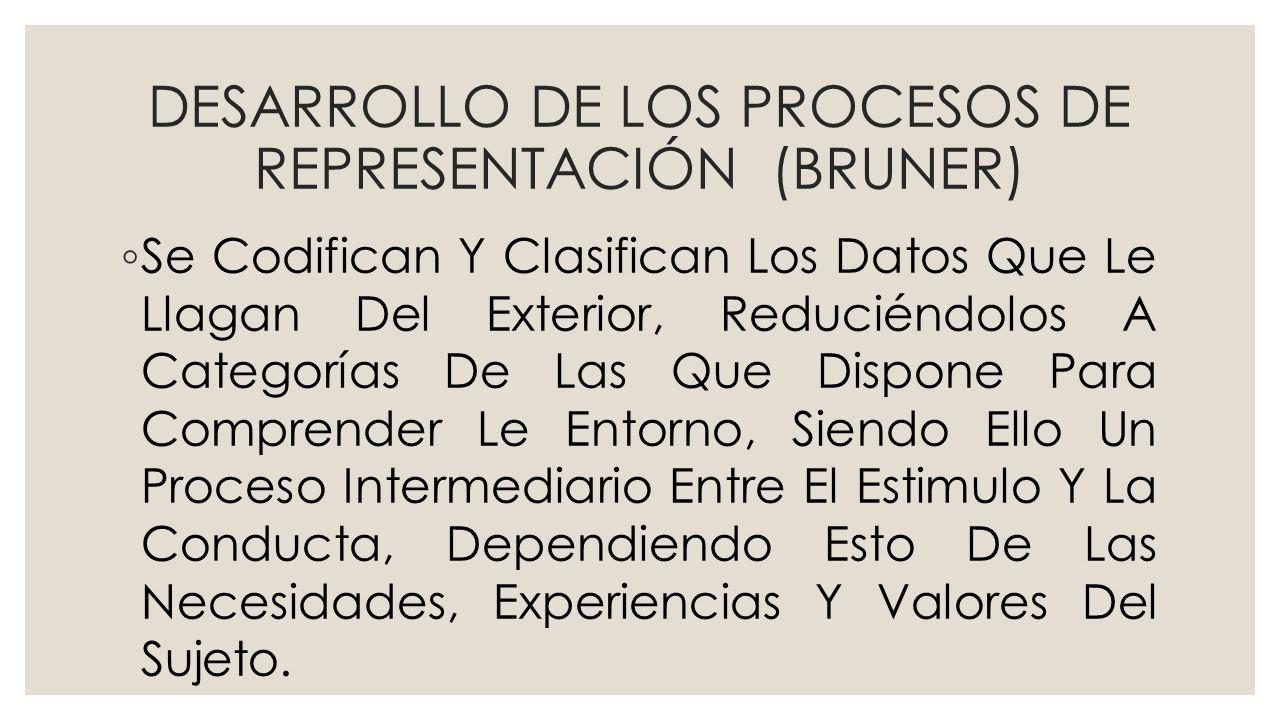 DESARROLLO DE LOS PROCESOS DE REPRESENTACIÓN (BRUNER)