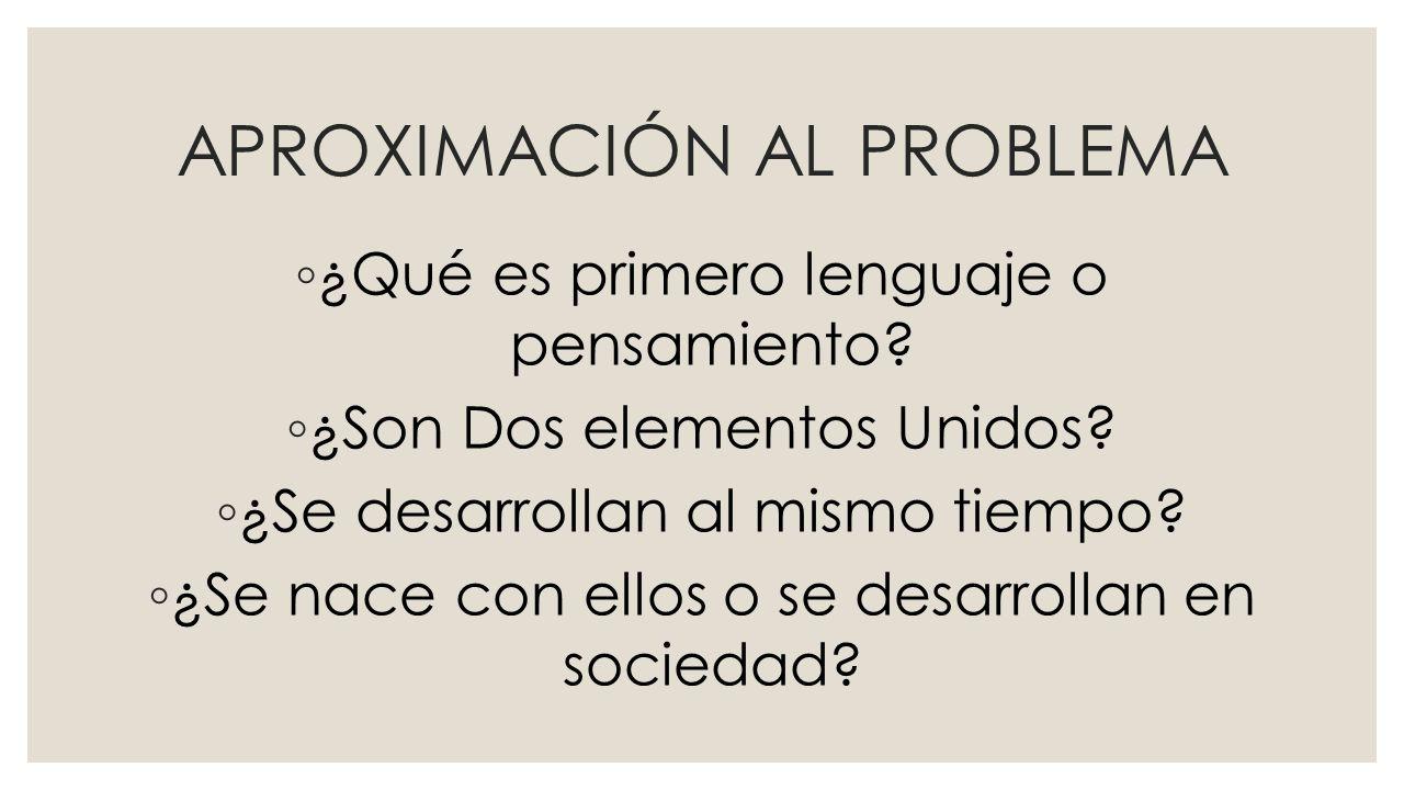 APROXIMACIÓN AL PROBLEMA