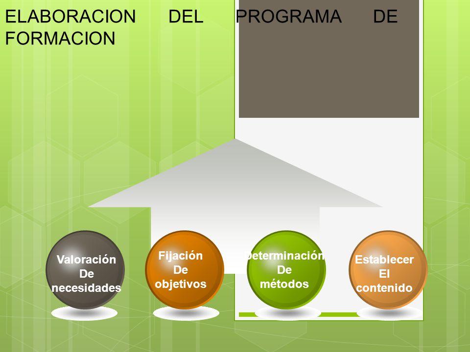 ELABORACION DEL PROGRAMA DE FORMACION