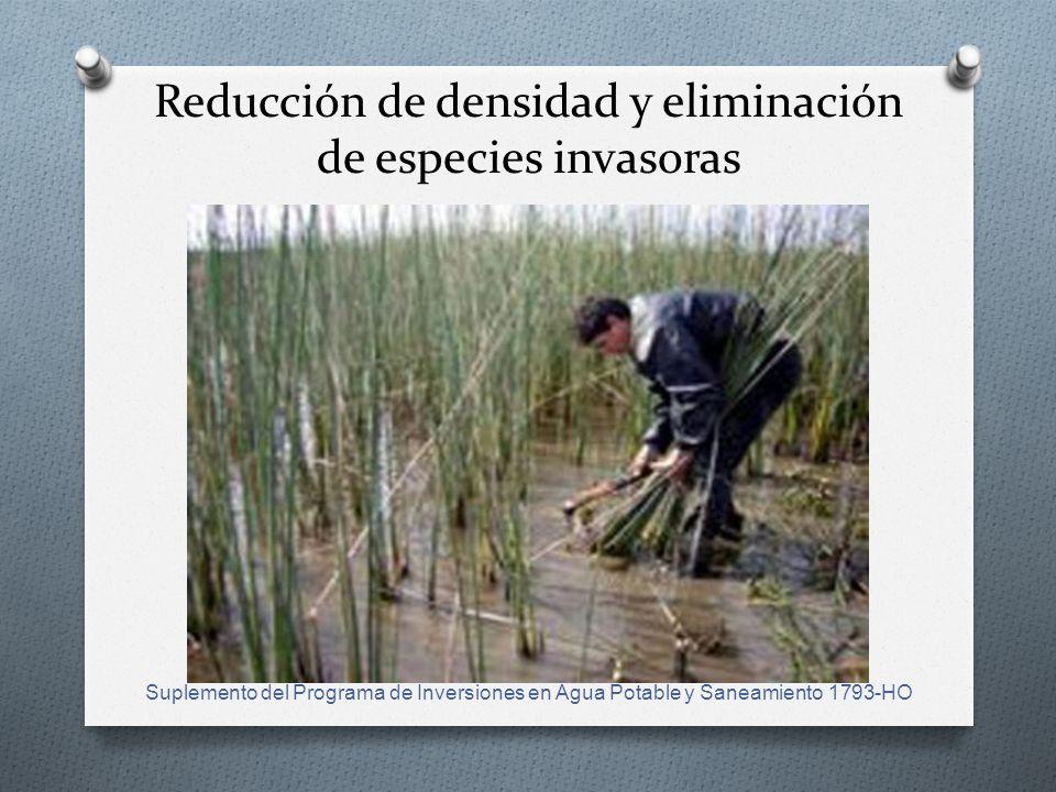 Reducción de densidad y eliminación de especies invasoras