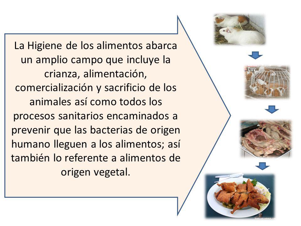 La Higiene de los alimentos abarca un amplio campo que incluye la crianza, alimentación, comercialización y sacrificio de los animales así como todos los procesos sanitarios encaminados a prevenir que las bacterias de origen humano lleguen a los alimentos; así también lo referente a alimentos de origen vegetal.