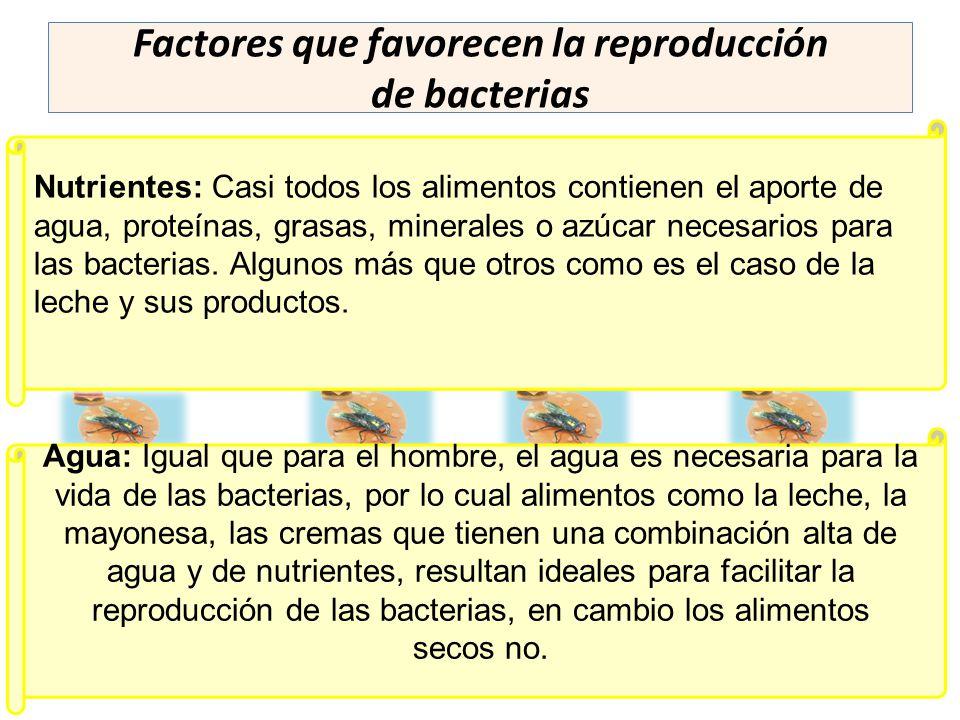 Factores que favorecen la reproducción de bacterias