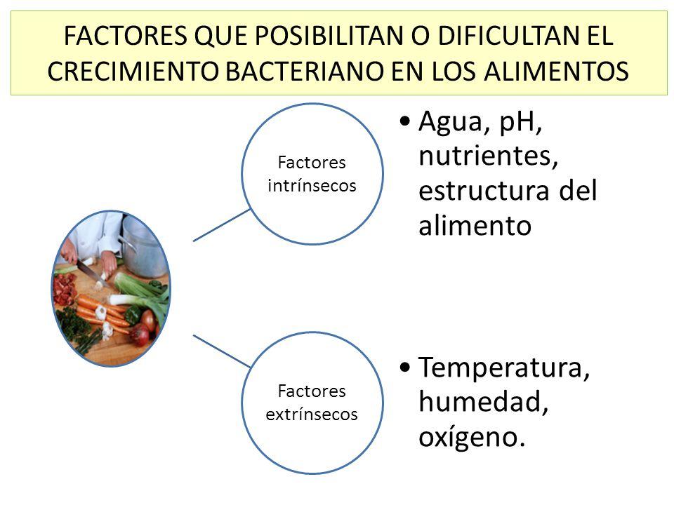 FACTORES QUE POSIBILITAN O DIFICULTAN EL CRECIMIENTO BACTERIANO EN LOS ALIMENTOS